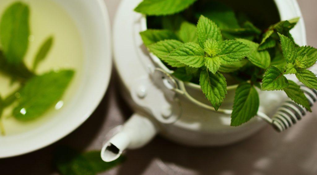 بهترین دمنوش های گیاهی برای لاغری کدامند ؟
